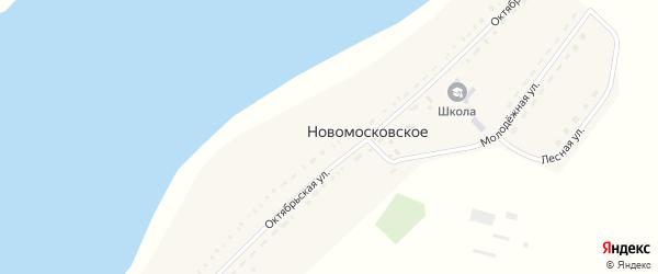 Молодежная улица на карте Новомосковского села с номерами домов