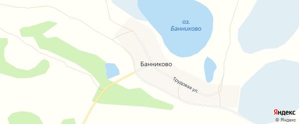 Карта деревни Банниково в Челябинской области с улицами и номерами домов