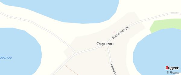 Южная улица на карте деревни Окунево с номерами домов