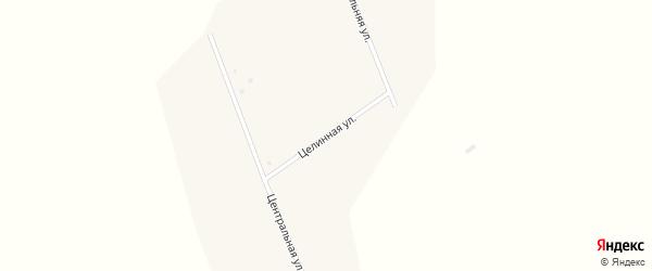 Целинная улица на карте села Петровки с номерами домов
