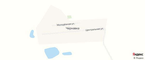 Карта села Чернавки в Алтайском крае с улицами и номерами домов