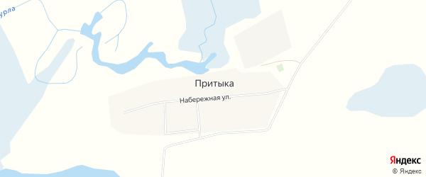 Карта села Притыки в Алтайском крае с улицами и номерами домов