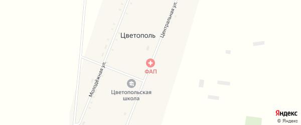Центральная улица на карте села Цветополя с номерами домов