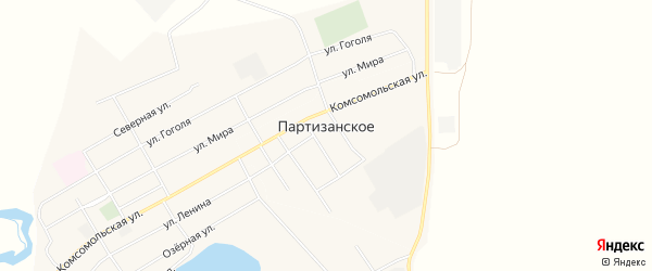 Карта Партизанского села в Алтайском крае с улицами и номерами домов