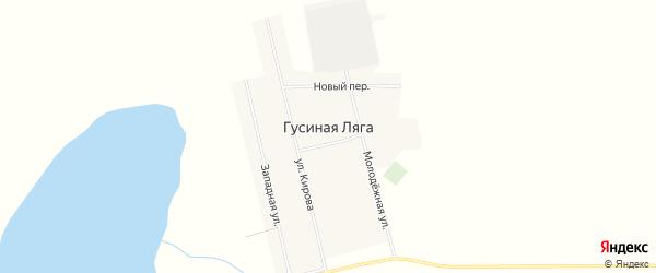 Карта села Гусиной Ляги в Алтайском крае с улицами и номерами домов