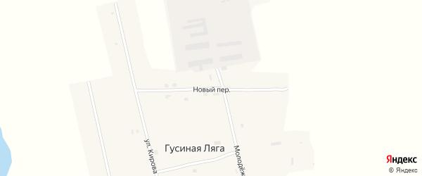 Новый переулок на карте села Гусиной Ляги с номерами домов