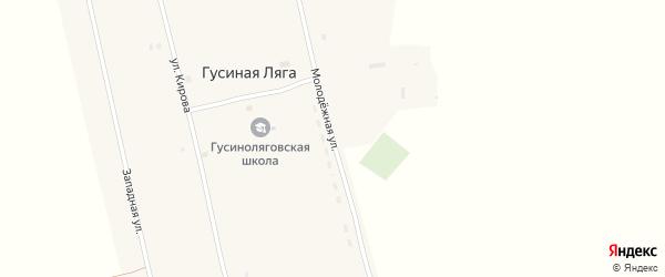 Молодежная улица на карте села Гусиной Ляги с номерами домов