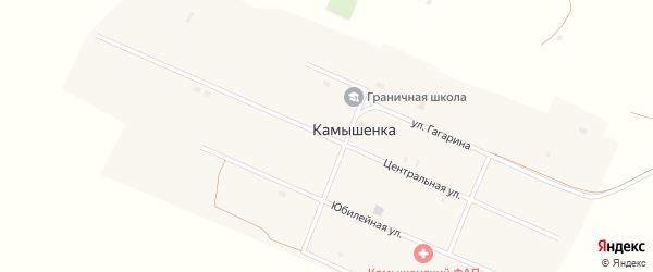Центральная улица на карте села Камышенки с номерами домов