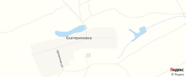 Карта села Екатериновки города Славгорода в Алтайском крае с улицами и номерами домов