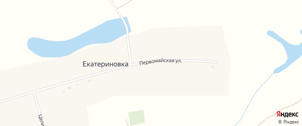 Первомайская улица на карте села Екатериновки с номерами домов