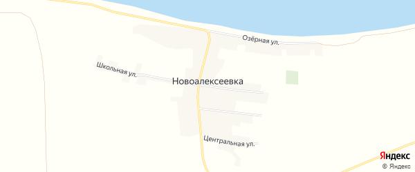 Карта села Новоалексеевки в Алтайском крае с улицами и номерами домов