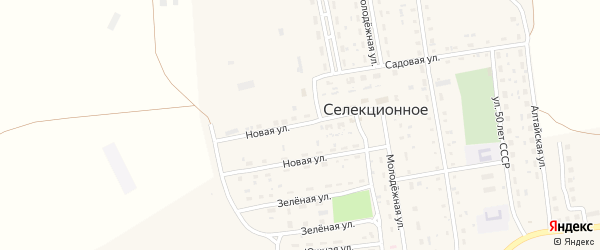 Новая улица на карте Селекционного села с номерами домов
