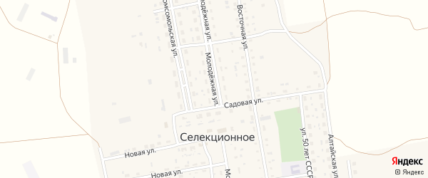 Молодежная улица на карте Селекционного села с номерами домов