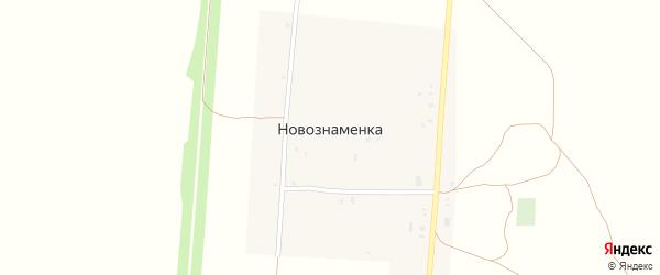 Лесная улица на карте села Новознаменки с номерами домов