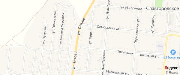 Улица Мира на карте Славгородского села с номерами домов