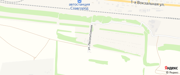 Улица Лесопитомник на карте Славгорода с номерами домов