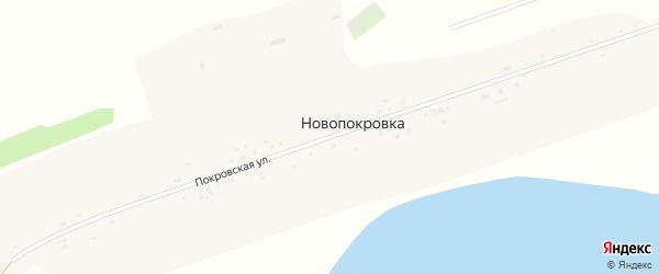 Покровская улица на карте села Новопокровки с номерами домов