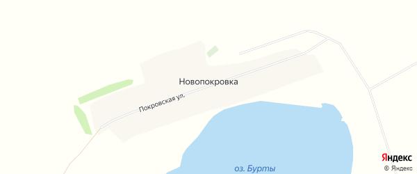 Карта села Новопокровки в Алтайском крае с улицами и номерами домов