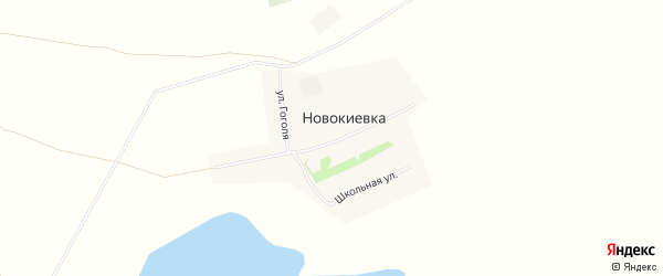 Карта села Новокиевка в Алтайском крае с улицами и номерами домов