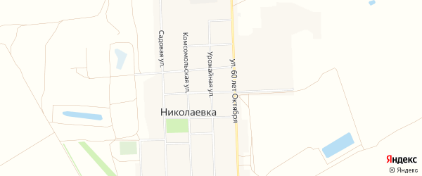 Карта села Николаевки в Алтайском крае с улицами и номерами домов