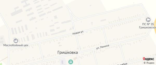 Новая улица на карте села Гришковки с номерами домов