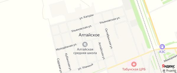 Карта Алтайского села в Алтайском крае с улицами и номерами домов
