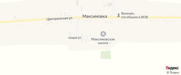 Новая улица на карте села Максимовки с номерами домов