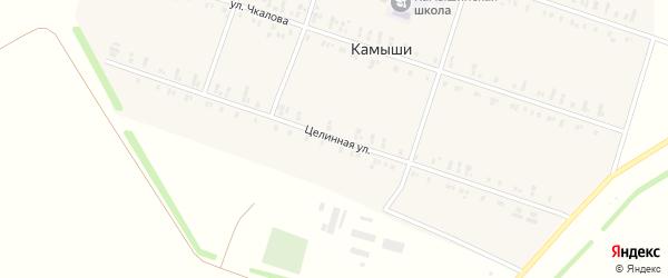 Целинная улица на карте села Камыши с номерами домов