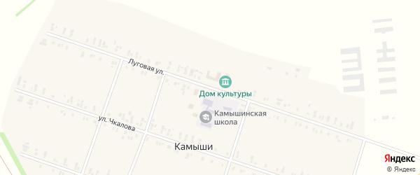 Луговая улица на карте села Камыши с номерами домов
