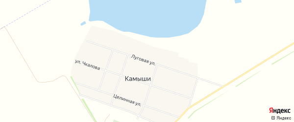 Карта села Камыши в Алтайском крае с улицами и номерами домов