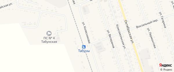 Улица Колесникова на карте села Табуны с номерами домов