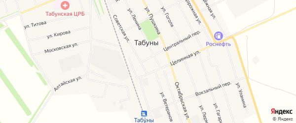 Карта села Табуны в Алтайском крае с улицами и номерами домов