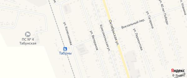 Улица Ветеранов на карте села Табуны с номерами домов