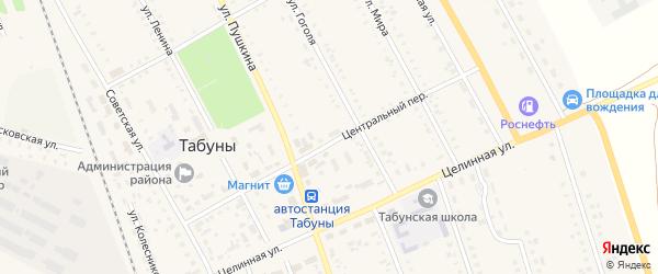 Центральный переулок на карте села Табуны с номерами домов