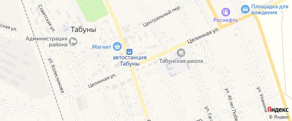 Целинная улица на карте села Табуны с номерами домов