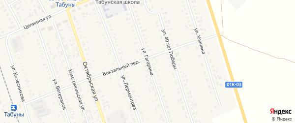 Улица Гагарина на карте села Табуны с номерами домов