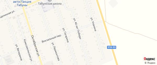 Улица 40 лет Победы на карте села Табуны с номерами домов