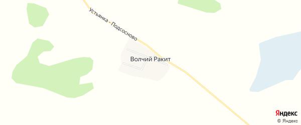 Карта села Волчия Ракита в Алтайском крае с улицами и номерами домов