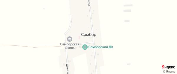 Центральный переулок на карте села Самбора с номерами домов