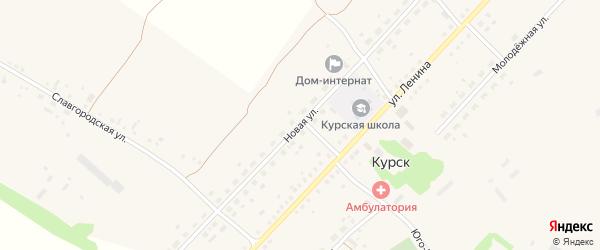 Новая улица на карте села Курска с номерами домов