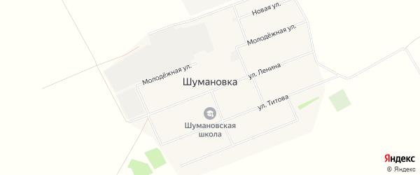 Карта села Шумановки в Алтайском крае с улицами и номерами домов