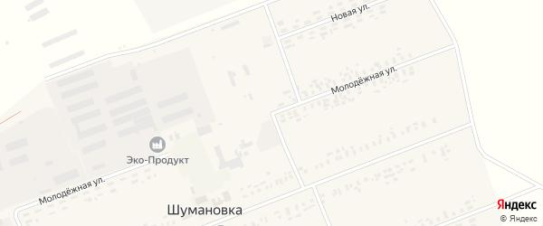 Молодежная улица на карте села Шумановки с номерами домов
