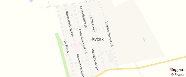 Карта села Кусака в Алтайском крае с улицами и номерами домов