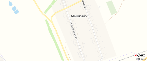 Молодежная улица на карте села Мышкино с номерами домов