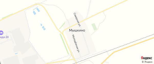 Карта села Мышкино в Алтайском крае с улицами и номерами домов