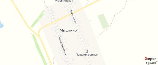 Северная улица на карте села Мышкино с номерами домов