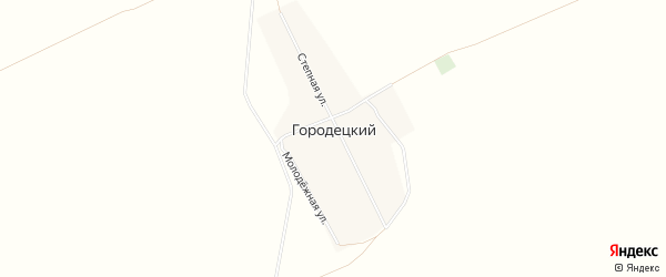 Карта Городецкого поселка в Алтайском крае с улицами и номерами домов