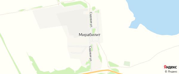 Карта поселка Мирабилита в Алтайском крае с улицами и номерами домов