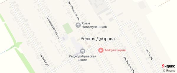 Октябрьская улица на карте села Редкой Дубравы с номерами домов