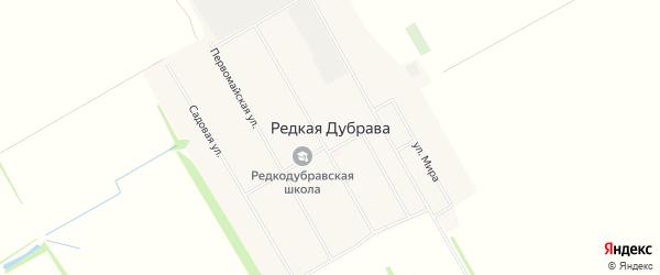 Карта села Редкой Дубравы в Алтайском крае с улицами и номерами домов